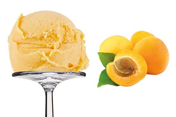 Sorbet Apricot - Aprikose 2,5 Liter
