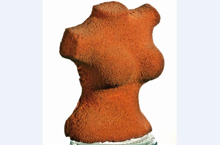Striptease-Frauentorso Kokosparfait im Schokoladenmantel 100 ml, 12 Stück
