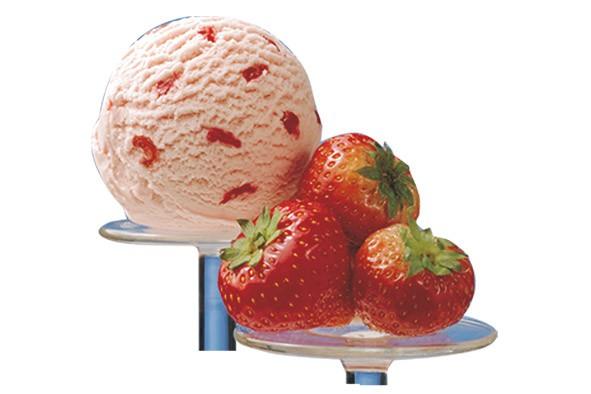 Erdbeere Extra Cremeeis 5 Liter